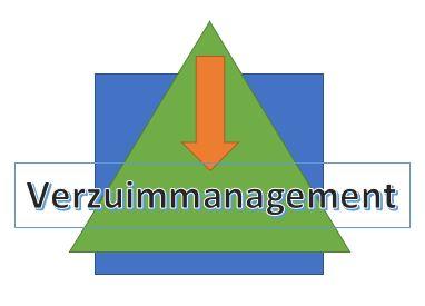 verzuimmanagement